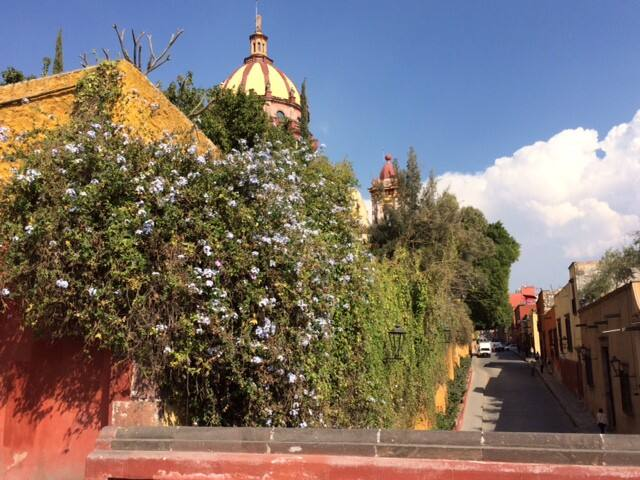 Yours to explore San Miguel de Allende