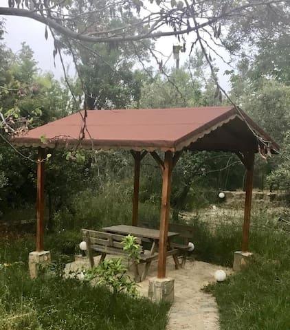 Kaz dağlarında bol oksijen ve huzurlu ev