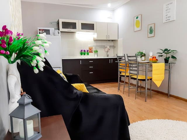 В Центре Одессы уютная квартира-студия с балконом
