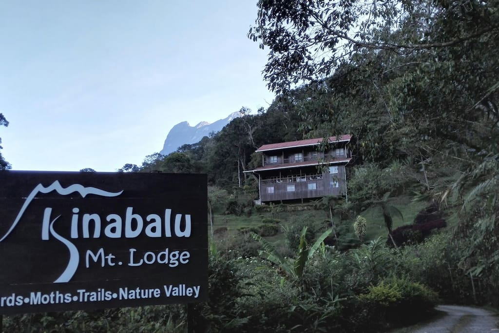 Outlook for Kinabalu Mountain Lodge