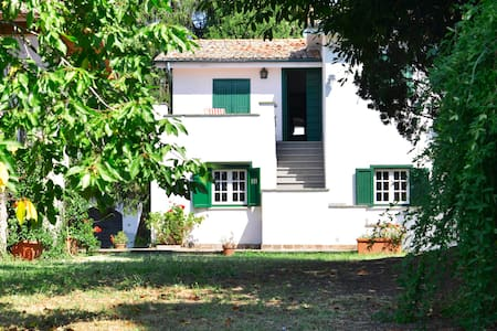 COTTAGE IN THE CASTELLI ROMANI AREA - Velletri