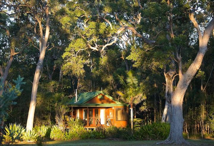 Lake Weyba Cottage Noosa Spring has Sprung,