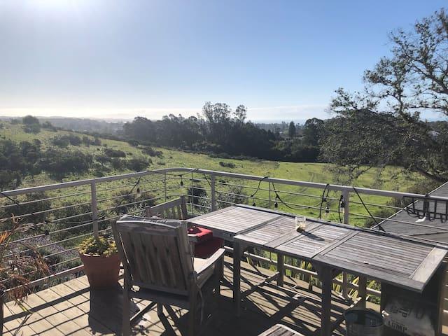 Best view in Santa Cruz County! Separate entrance!