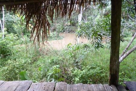 AMAZON JUNGLE HUT
