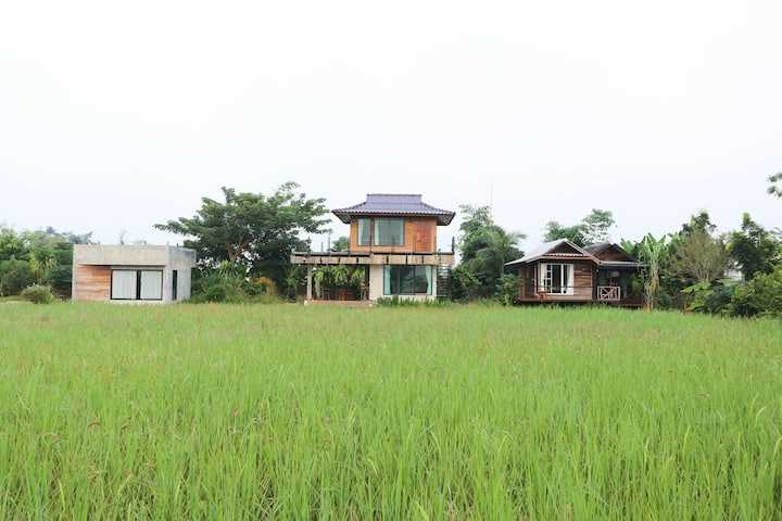 Serene Rice Field 2BR Modern Home