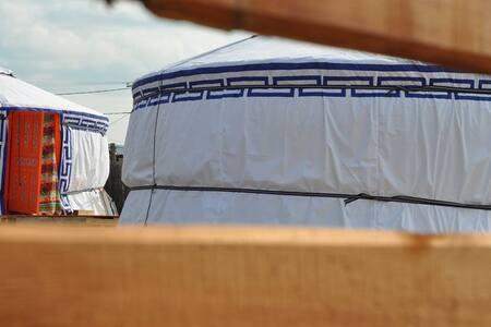 Cozy yurtas, reasonable prices