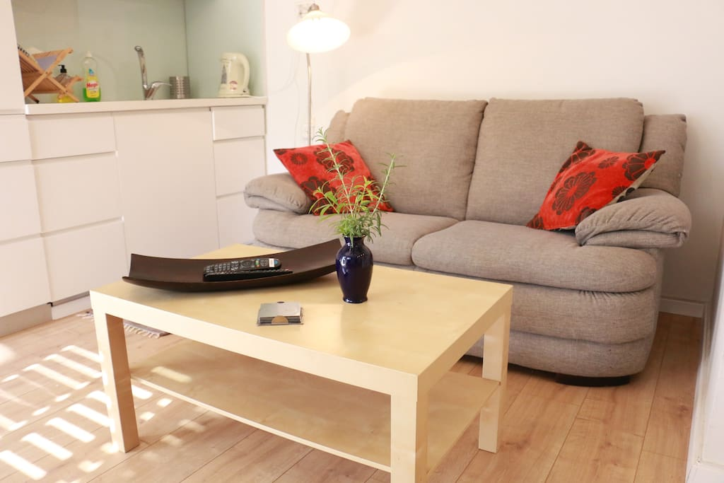The sofa to relax and watch TV or read