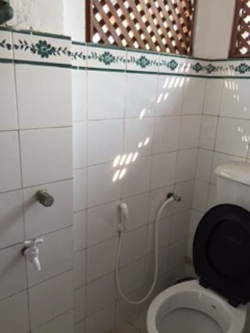 basic toilet with shower