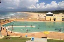Local Beach: Pristine white sand Port Kembla Beach & Pool  6 mins drive away