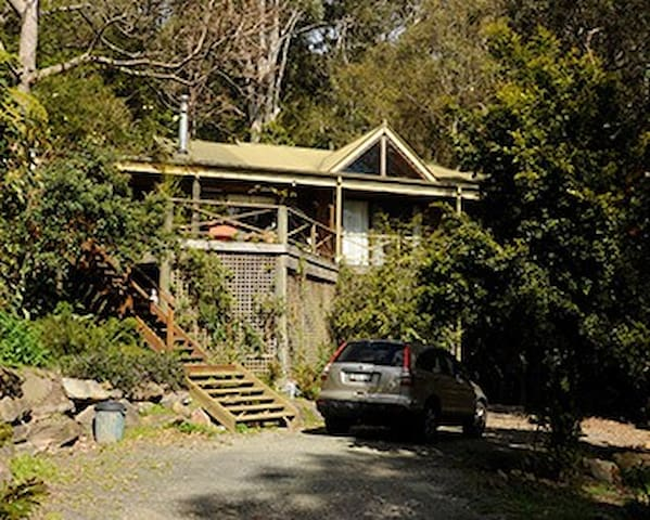 TreeTops-Hardys bay Elevated House - Hardys Bay - Ev