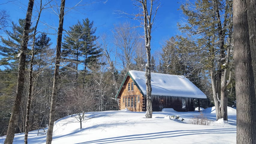 A beautiful winters day, looking at the back southern wall of the cabin.