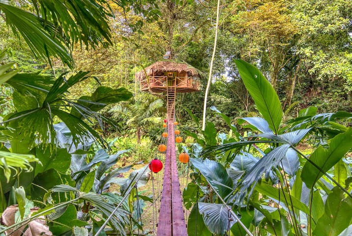 Secret Jungle Treehouse by the Sea