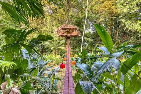 Secret Jungle Treehouse by the Sea