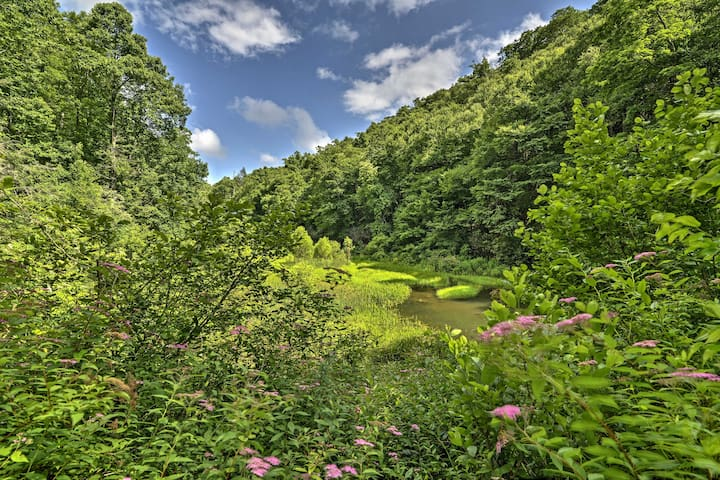 The cabin is nestled on 150 acres of pristine forest in the Blue Ridge Mountains