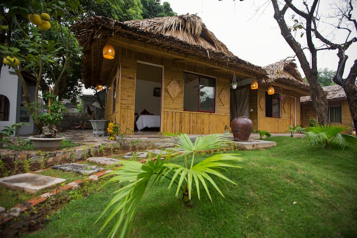 Amazing Homestay - Tam Coc Palm House