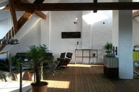 Roof Loft in Kleinbasel - Basilea - Loft