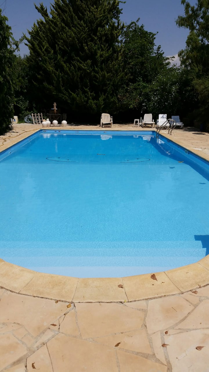Farm house swimming pool and garden