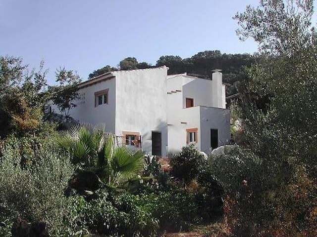 Preciosa casa 3 dormitorios cn huerto y granja eco - Ventorros de San José - Hus