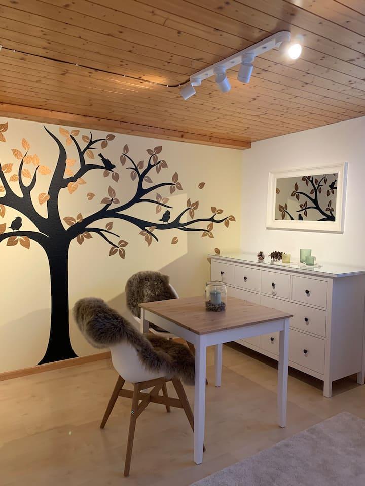 Gemütliches Studio in der Region Baden/Zürich