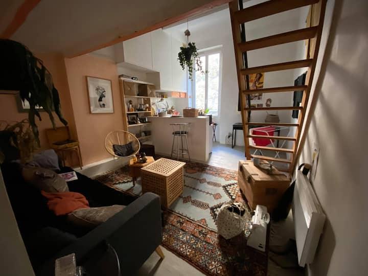 Charmant appartement 6ème arrondissement