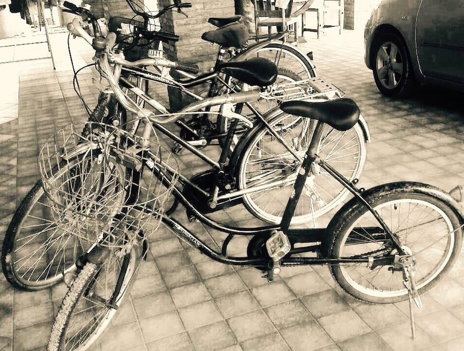 We also have bicycles for the guests who love to go sightseeing.