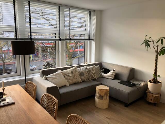 """Bright corner studio in the """"Negen Straatjes"""""""