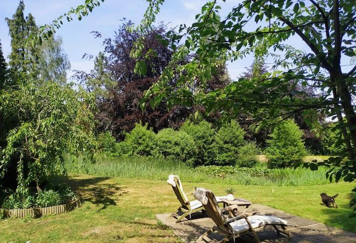 Oase van rust aan de vijver middenin de natuur