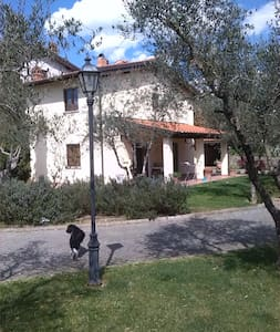 Casa Bellavista - Terranuova Bracciolini - Penzion (B&B)