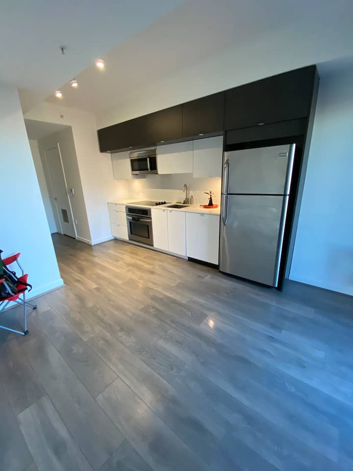 Upscale Apartment with Rooftop in the U St Area