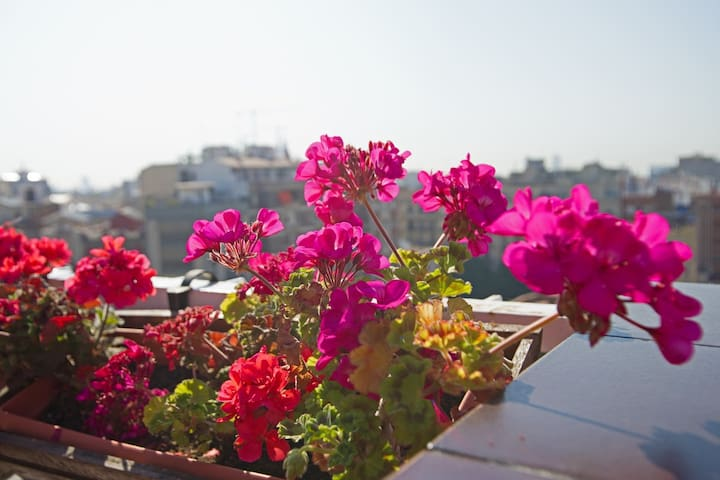 Penthouse with terrace and seaviews in Gracia - Barcelona - Appartement