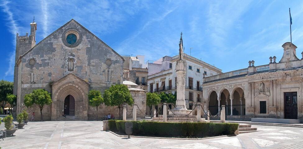 Lovely apartment in the historical center of Jerez - Jerez de la Frontera
