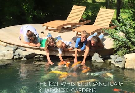Koi Whisperer Sanctuary & Japanese Gardens - St. Charles - Other