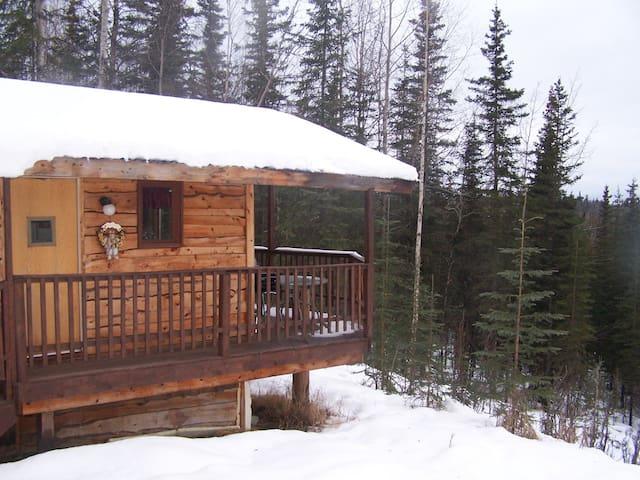 Baby Bear Cabin - Sterling - Cabana