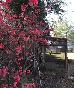 River Bend Retreat - Ashland City - Cabin