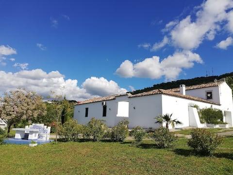 Hacienda la Molina oliemølle
