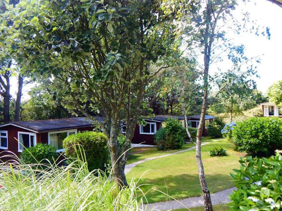 Mount Hawke Holiday Bungalows -  Chalets