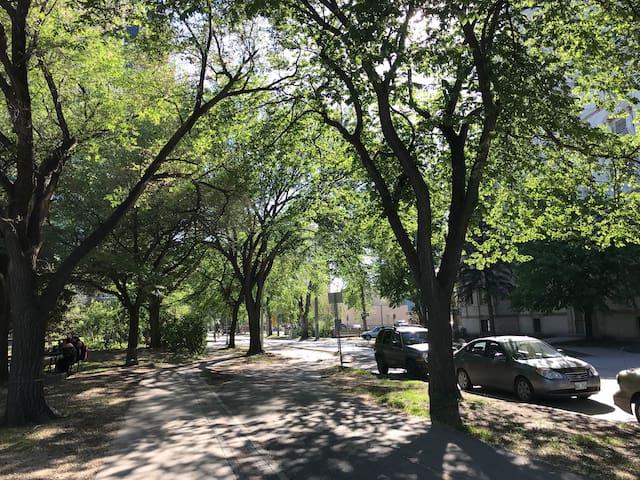 The neighbourhood is beautiful!