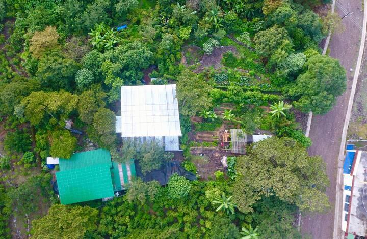 La Granja Tz'ikin Farm to table and eco hostal