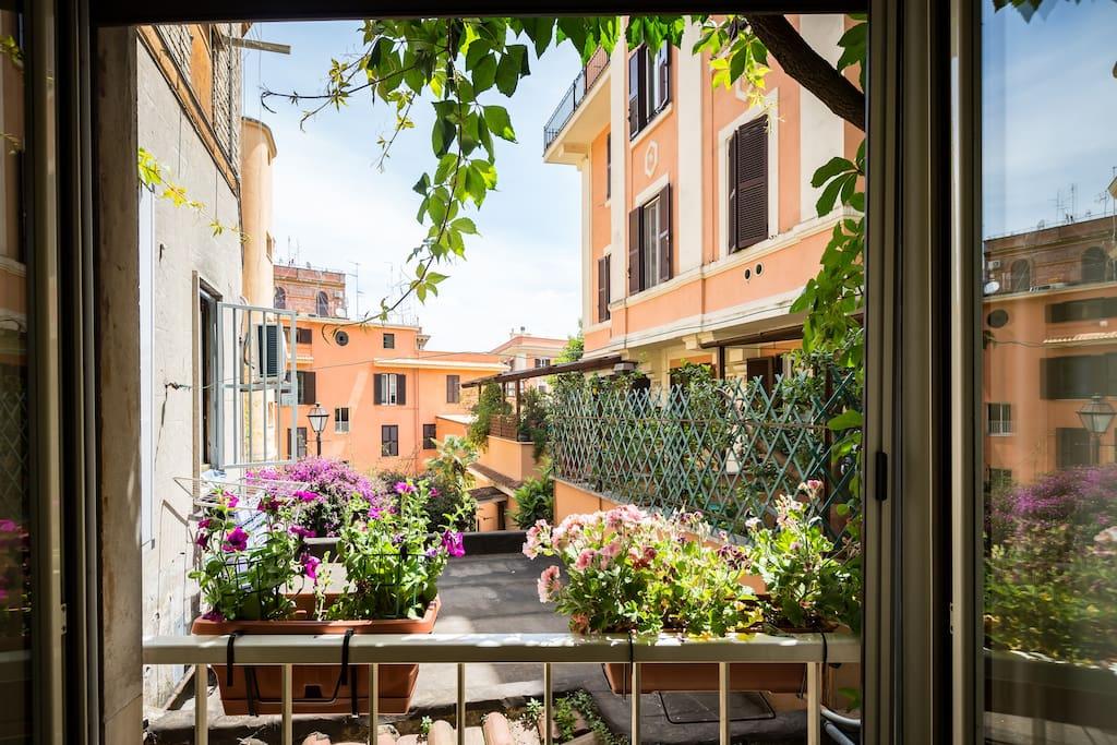 Studio via nicola fabrizi appartamenti in affitto a roma for Studio affitto roma