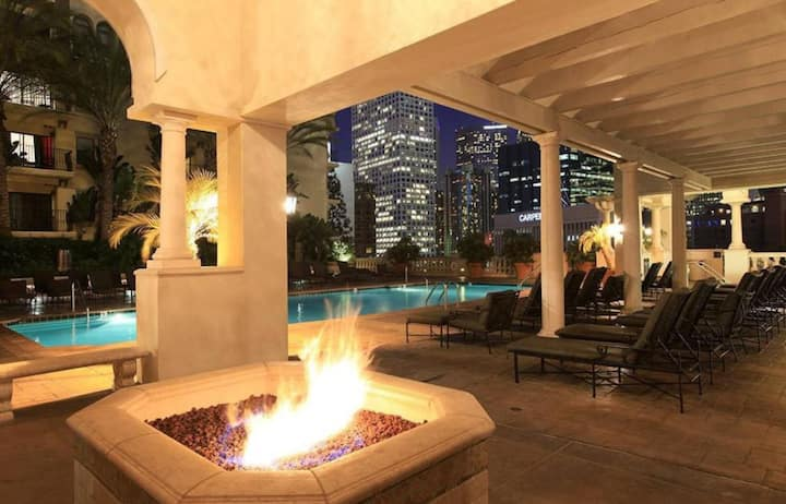 Gorgeous Apt in Downtown LA