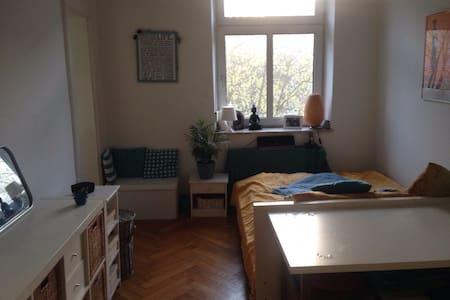 WG-Zimmer mit privatem Bad in München Sendling - Мюнхен - Квартира