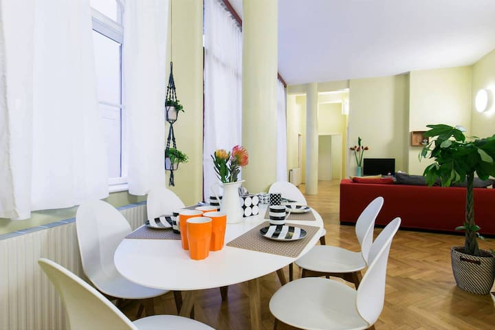 Apartment in the heart of Vienna (Sing 18, Top 5)