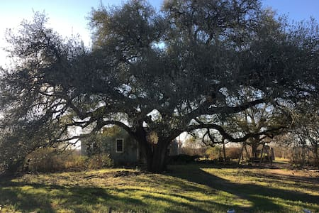 Blue Hill Farm House, 5 miles from Round Top - Burton