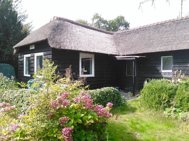 Vrijstaand rietgedekt buitenhuisje in de natuur - Midlaren - Casa