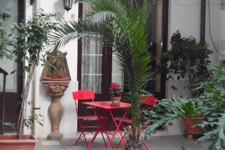 Bellini home and delicious plant - Catania