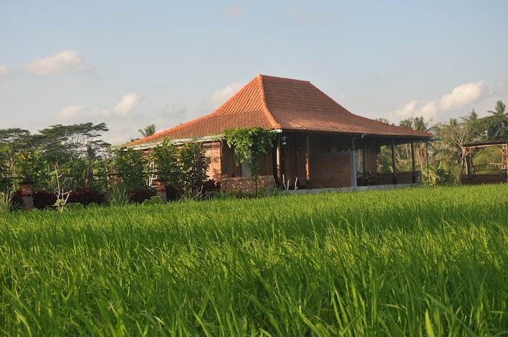 WANA STAY BALI - Tranquility in a Rice field