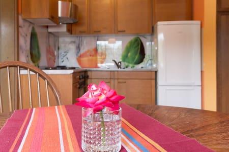 Apartment run by B&B and Hostel pod Skalo