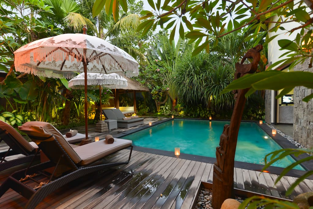 Swimming pool & tropical garden