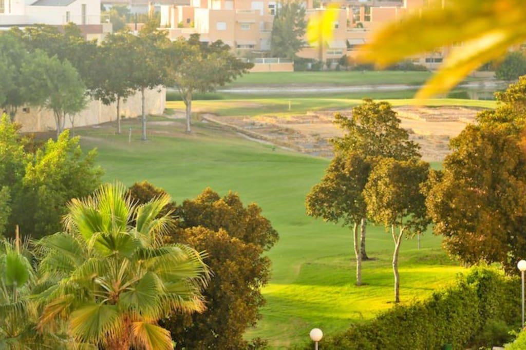 Campo de golf desde la terraza