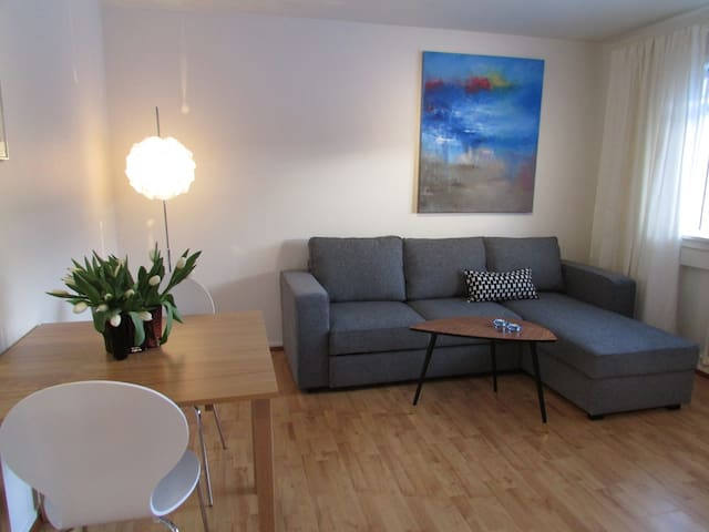 Cozy apartment near city center  - Reikiavik - Apartamento